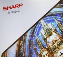 夏普赢得针对戴姆勒的网络技术专利侵权诉讼